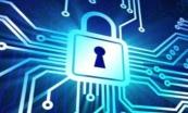 网络安全从0到1实战视频课程专题(虚拟机+网络原理)