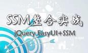SSM基础与实战教程