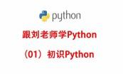 Python网络爬虫实战项目