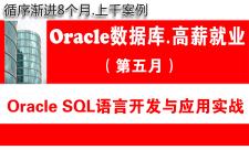 Oracle数据库教程(第五月):SQL语言开发基础