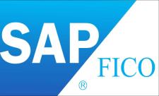 SAP FI财务会计零基础入门