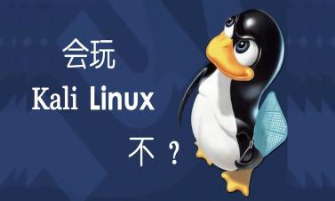 Kali Linux渗透测试从基础掌握到实战操作教程【2019新课】
