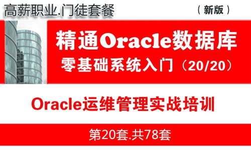 Oracle运维实战与日常维护管理入门(15个Oracle运维管理生产案例)