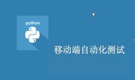 Python+Appium从基础到项目实战