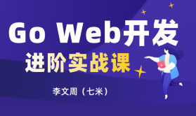 Go Web开发进阶实战(共81课时已完结)