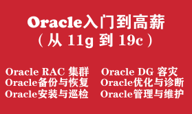 Oracle数据库工程师入门培训实战教程(从Oracle11g 到 Oracle19c)