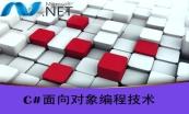 Microsoft .Net入门与项目实战